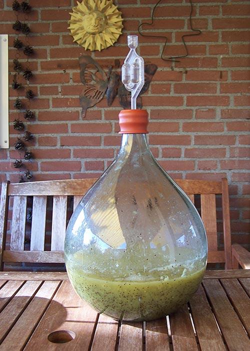Kiwi wijn in wording